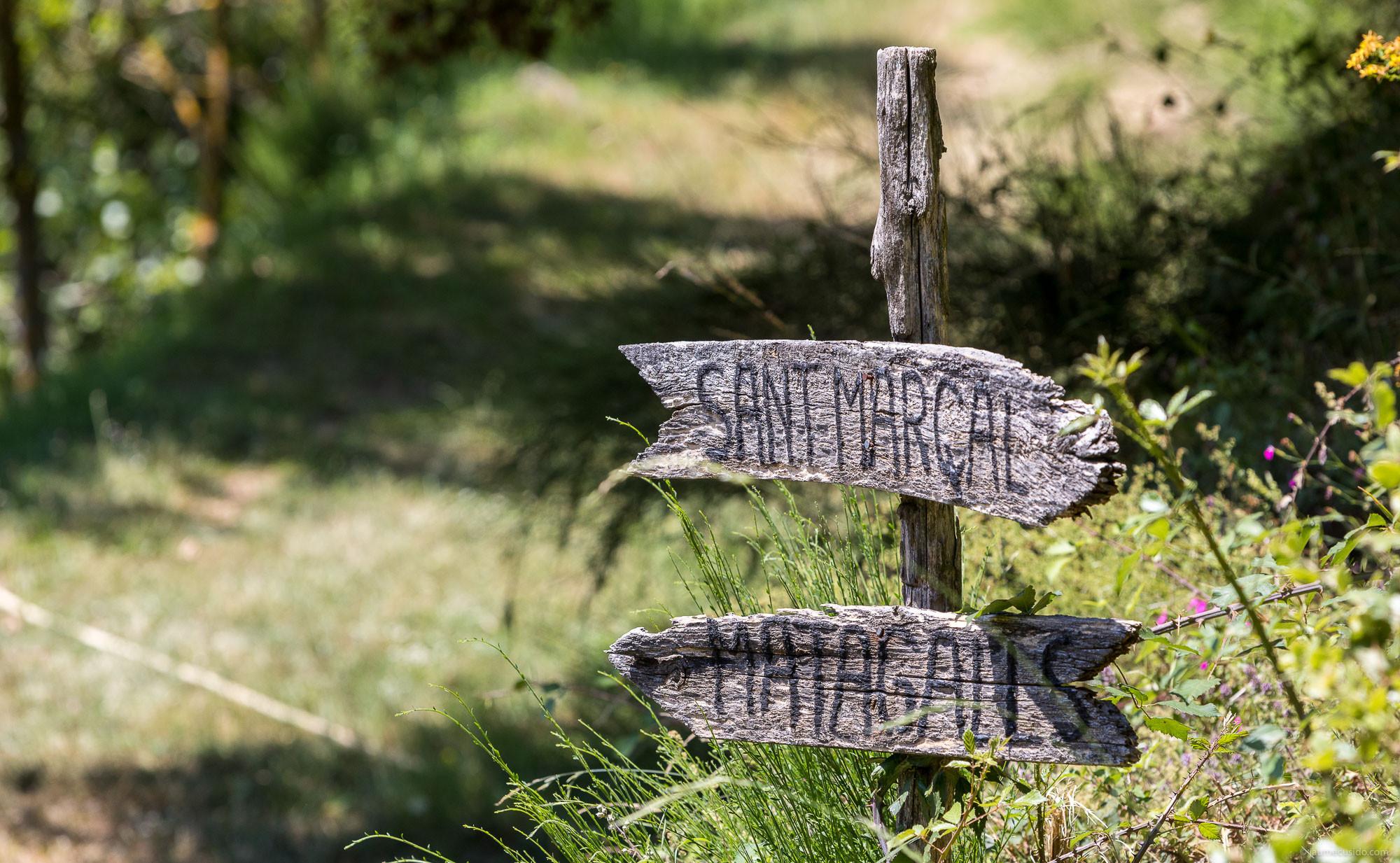 Encreuament al Montseny