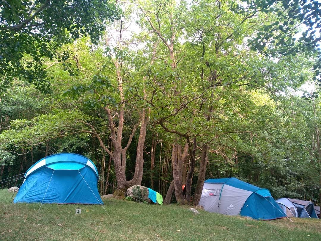 Tendes al Montseny